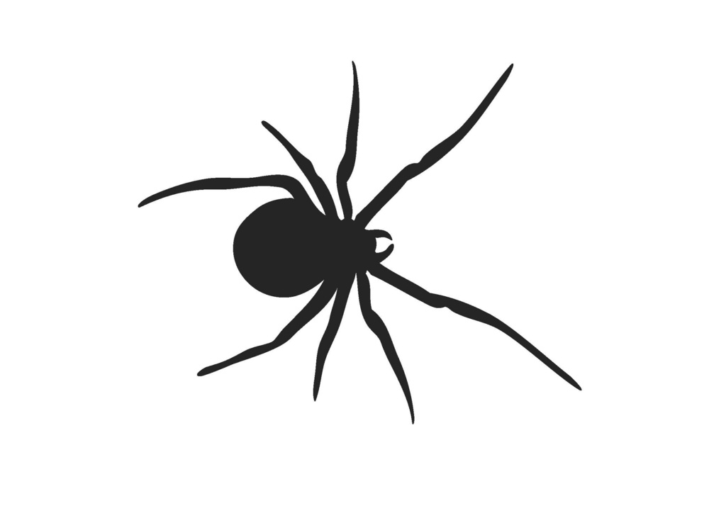 black widow spider silhouette - photo #2