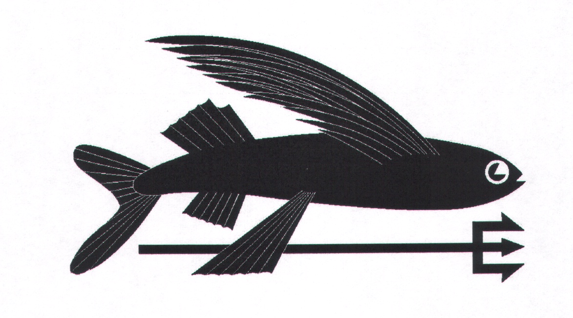 Fish atop trident by patagonia inc a california for Patagonia fish sticker