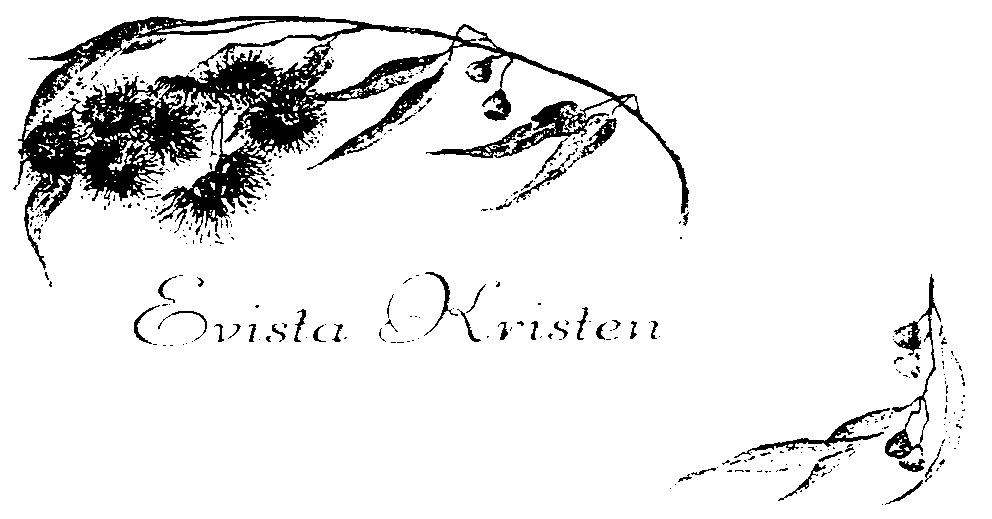 Evista Logo Evista Logo Evista Kristen
