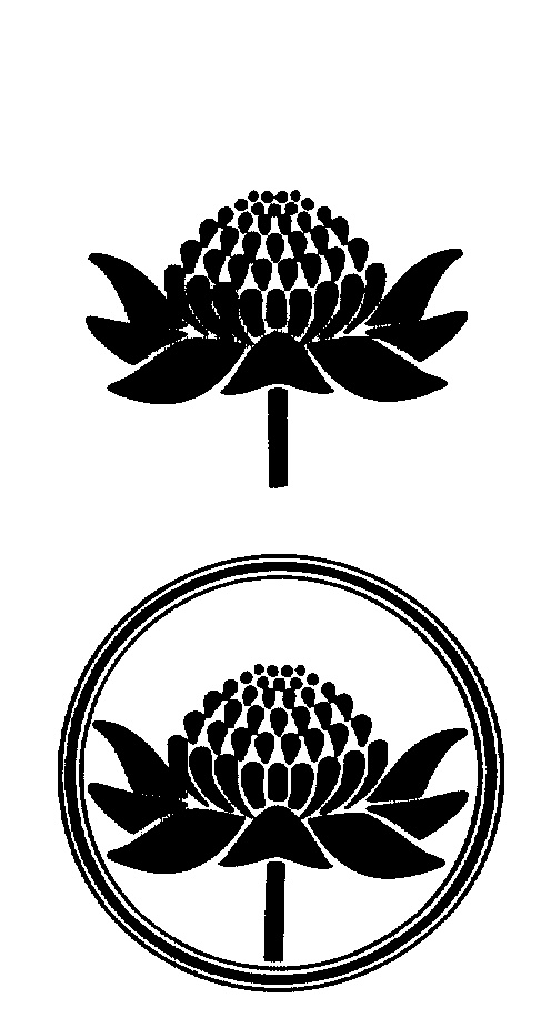 Australian Flowers Drawing by Australian Bush Flower