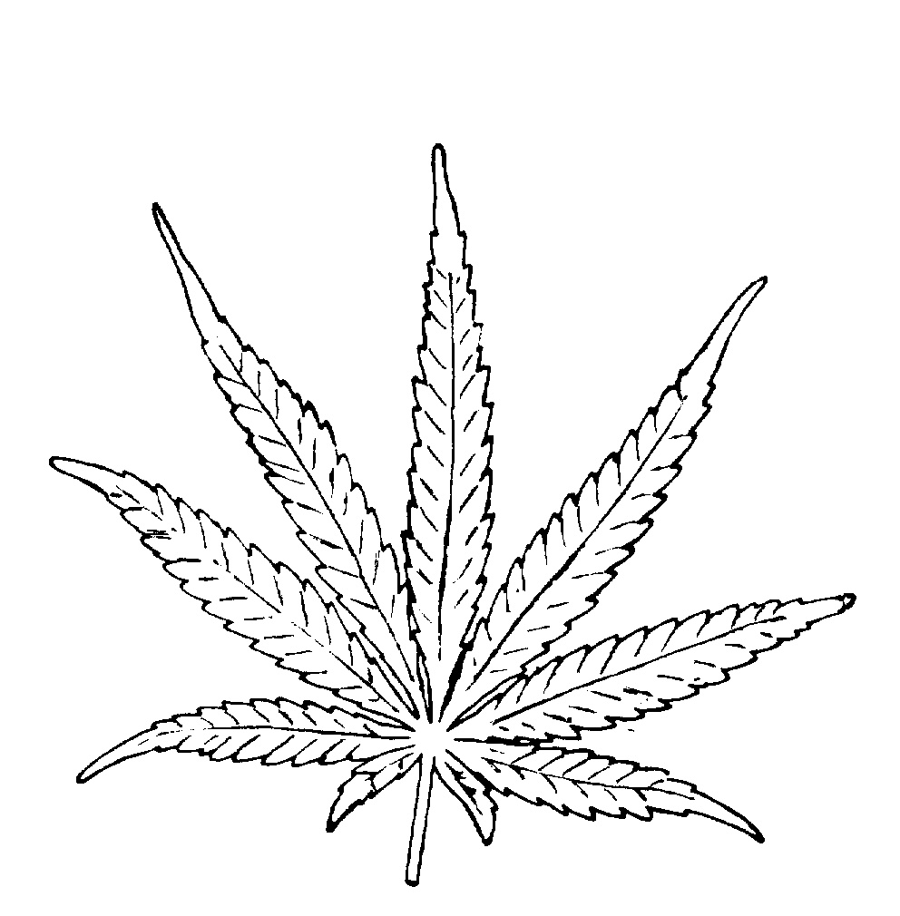 Cool Weed Leaf Drawings Cool Weed Leaf Drawings
