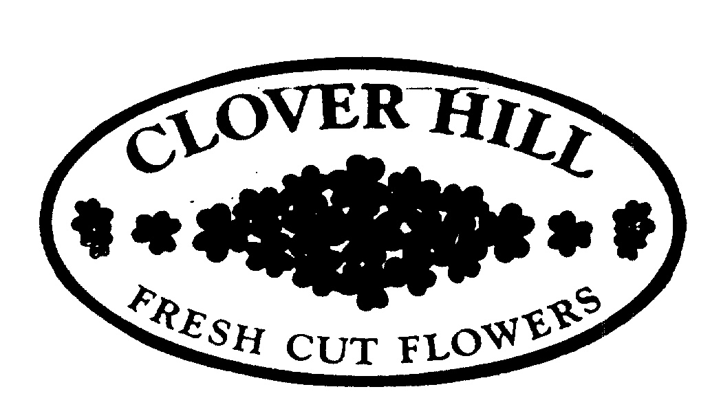 Universal Pictures Logo 1999 CLOVER HILL FRESH CUT ...