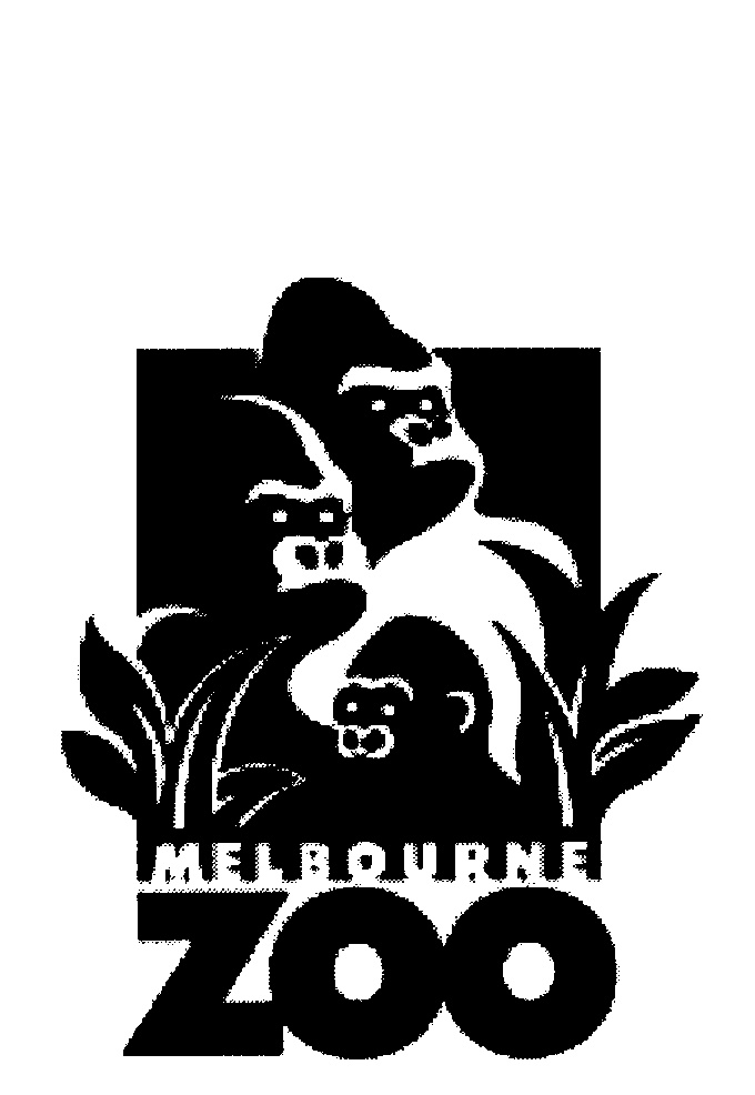 Melbourne Zoo By Zoological Parks And Gardens Board 820757