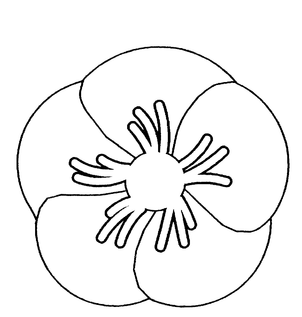 POPPY FLOWER IS BADGE logo by Returned & Services League of Australia ...